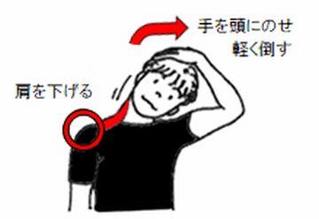 首筋を伸ばす